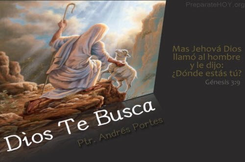 Dios te Busca - Serie Andrés Portes