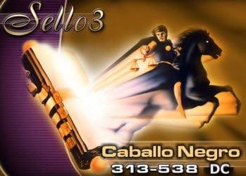 Sello 3: Caballo Negro, 313-538 DC