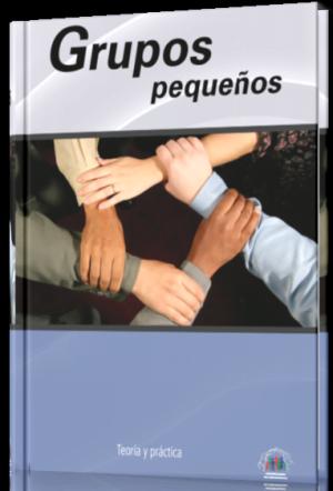 Grupos pequeños, Teoría y práctica - Libro