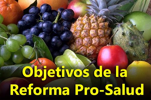 Objetivos de la Reforma Pro-Salud - Powerpoint