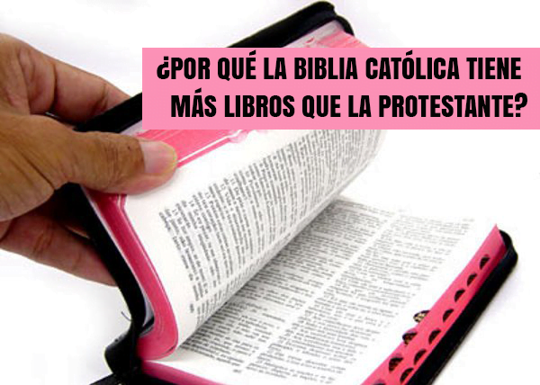 Por Qué La Biblia Católica Tiene Más Libros Que La Protestante